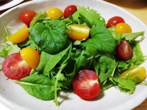 水耕栽培 サラダ