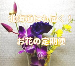 Bloomee LIFE(ブルーミーライフ) 北海道