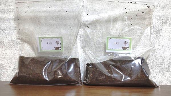 チコリコーヒー 通販
